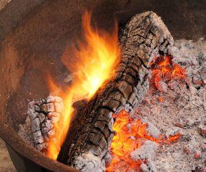 ash-barbecue-blaze-266541