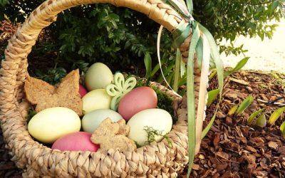 easter-nest-2122050_640