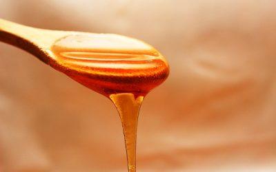 honey-1970592_640